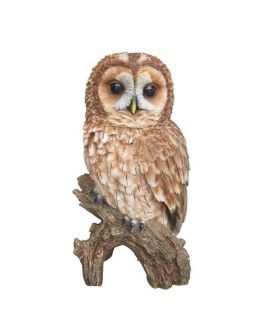 Detailed Real Life Tawny Owl Ornament
