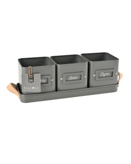 Set of 3 Charcoal Herb Pots in a Leather Handled Tray