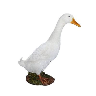 Detailed Real Life Standing White Duck