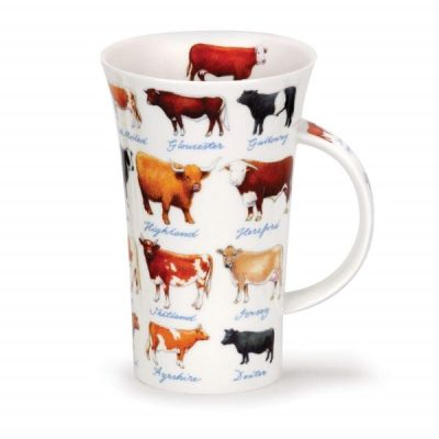 Educational Cow Bull Glencoe Fine China Mug 500ml