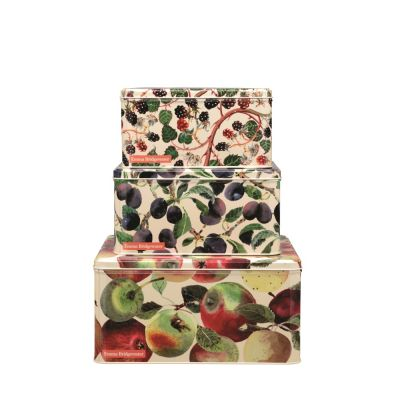 Fruits Square Cake Tins Set of 3