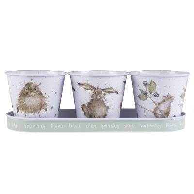 Set of 3 Galvanised Steel Herb Pots with Tray