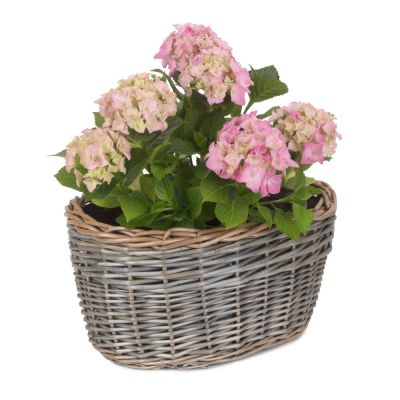 Willow Planter 35cm Oval Shape with Lining