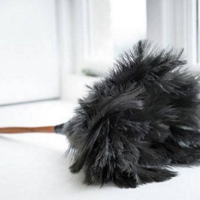 Ostrich Feather Duster with Beechwood Handle, 35cm