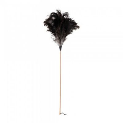 Extra Long Ostrich Feather Duster with Beech Wood Handle 110cm in Black