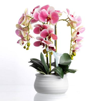 Triple Phalaenopsis Orchid with Pot 46cm Artificial
