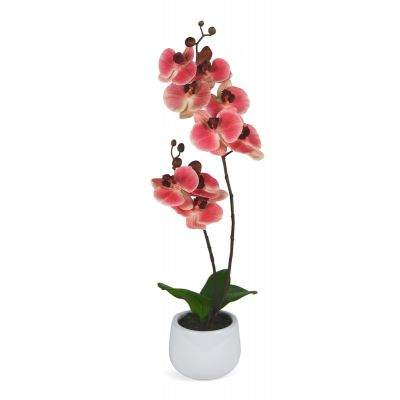 Fake Orchid Very High Quality 60cm