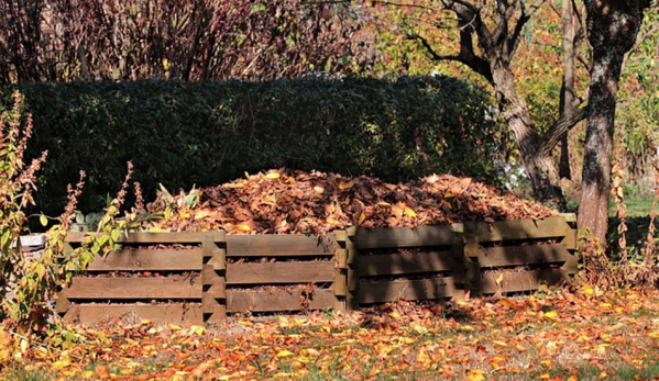 Beginners Guide: How To Compost For Maximum Success