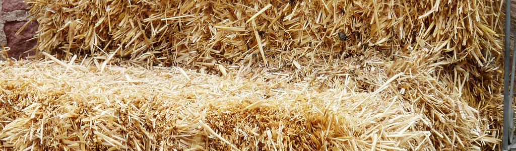 straw bale for climbing on
